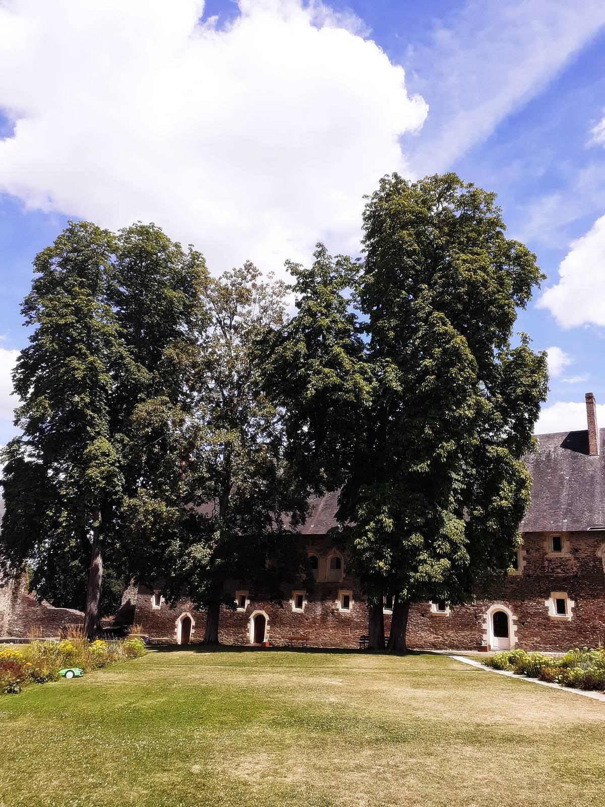 Chateau plessis mace maine loire gratuit20200801 150407