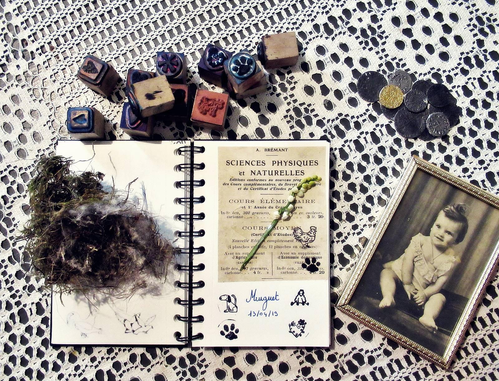 Herbier blog
