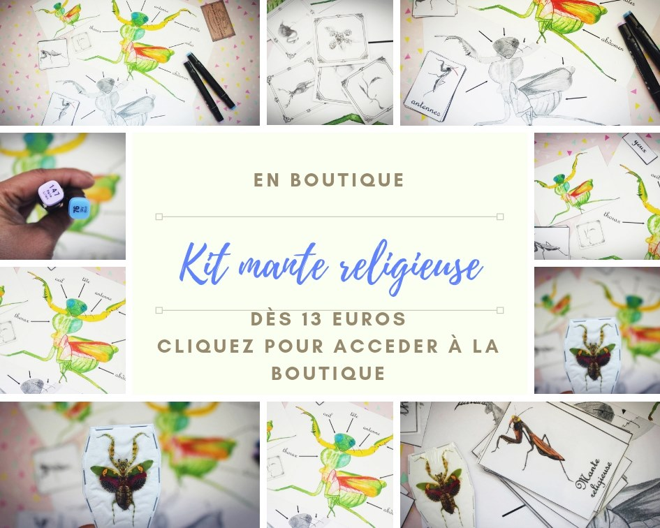 Kit mante religieuse