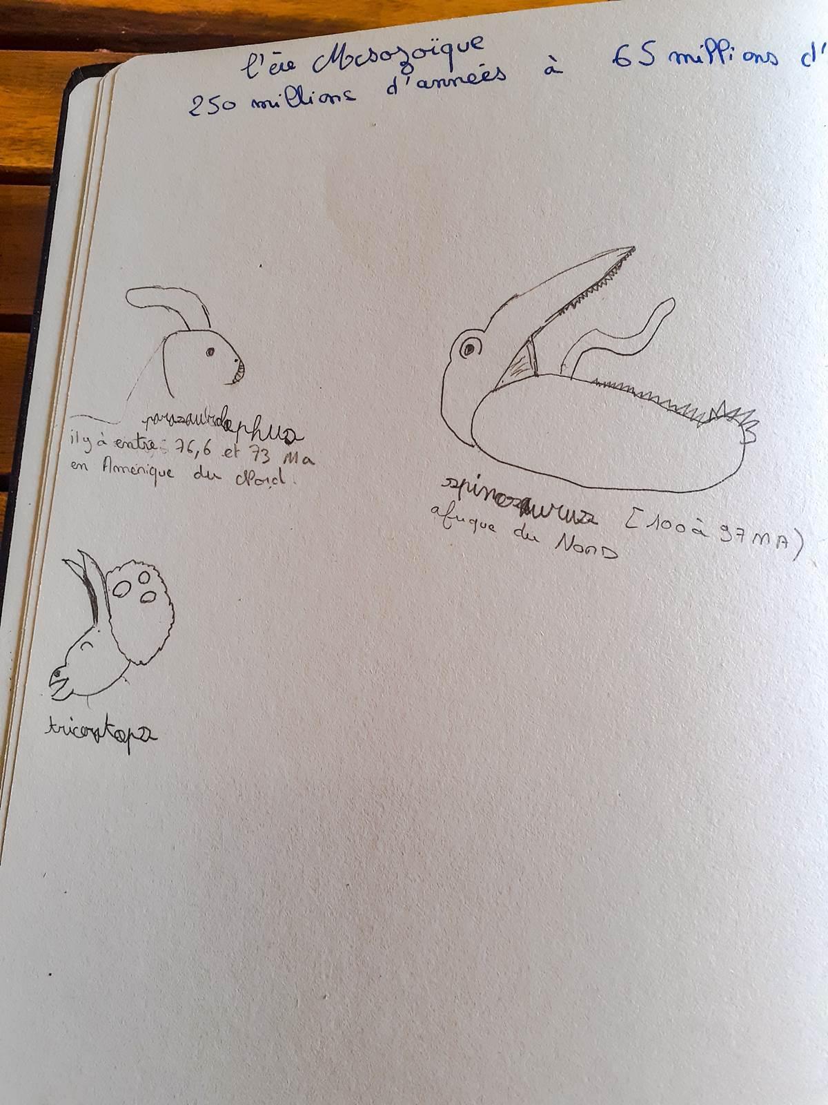Livre des siecles dinausores charlotte mason003