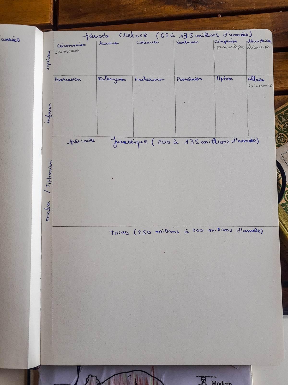 Livre des siecles dinausores charlotte mason004