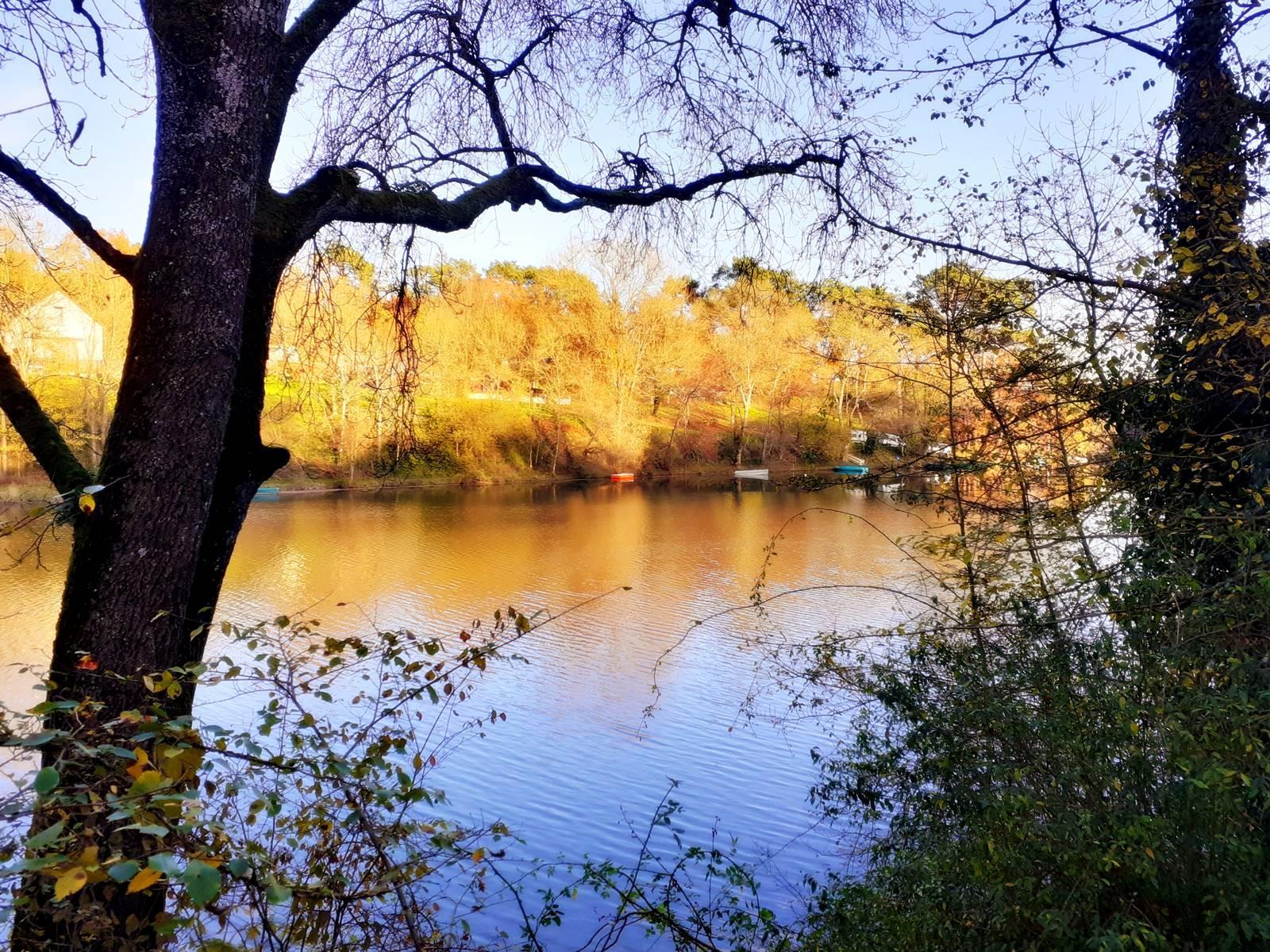 Moisdon la riviere faible20201128 172656