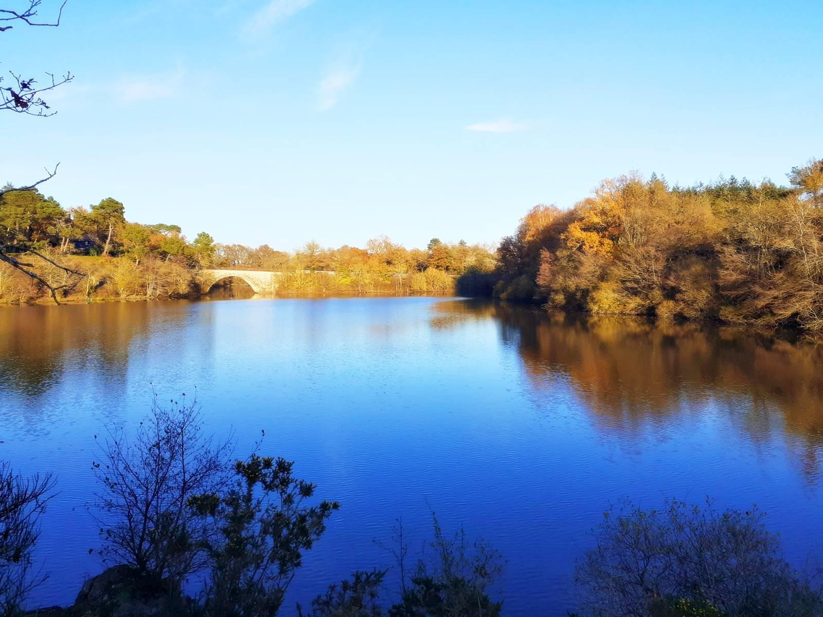 Moisdon la riviere faible20201128 172758