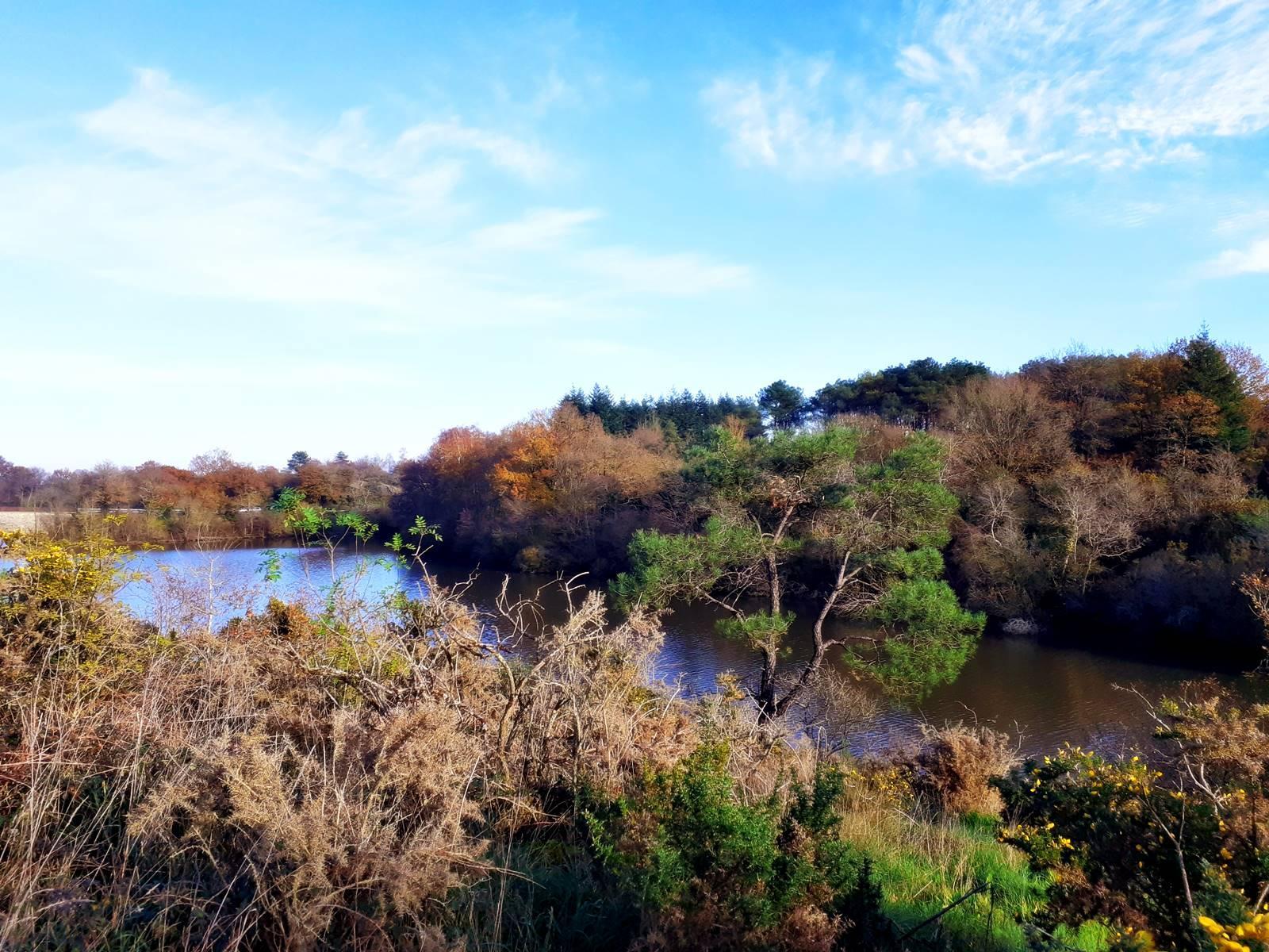 Moisdon la riviere faible20201128 173341