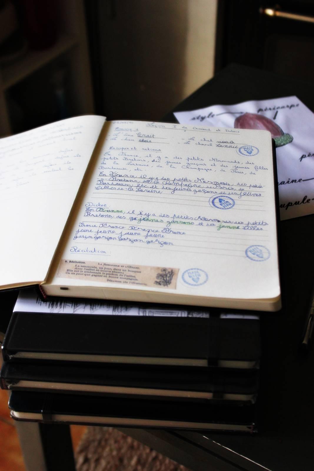 Mon journal d instructionimg 5505