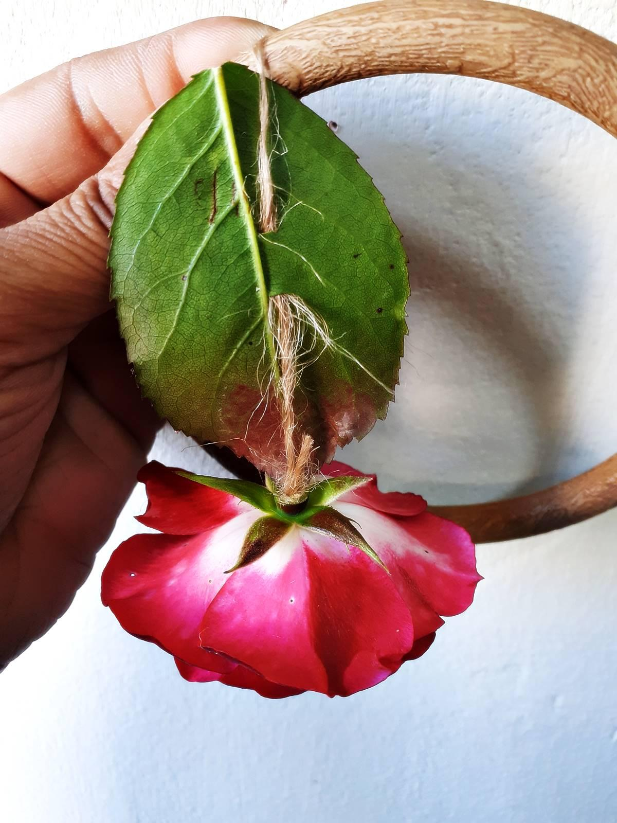 Roses diy mobile cadre photo blog20200526 124056