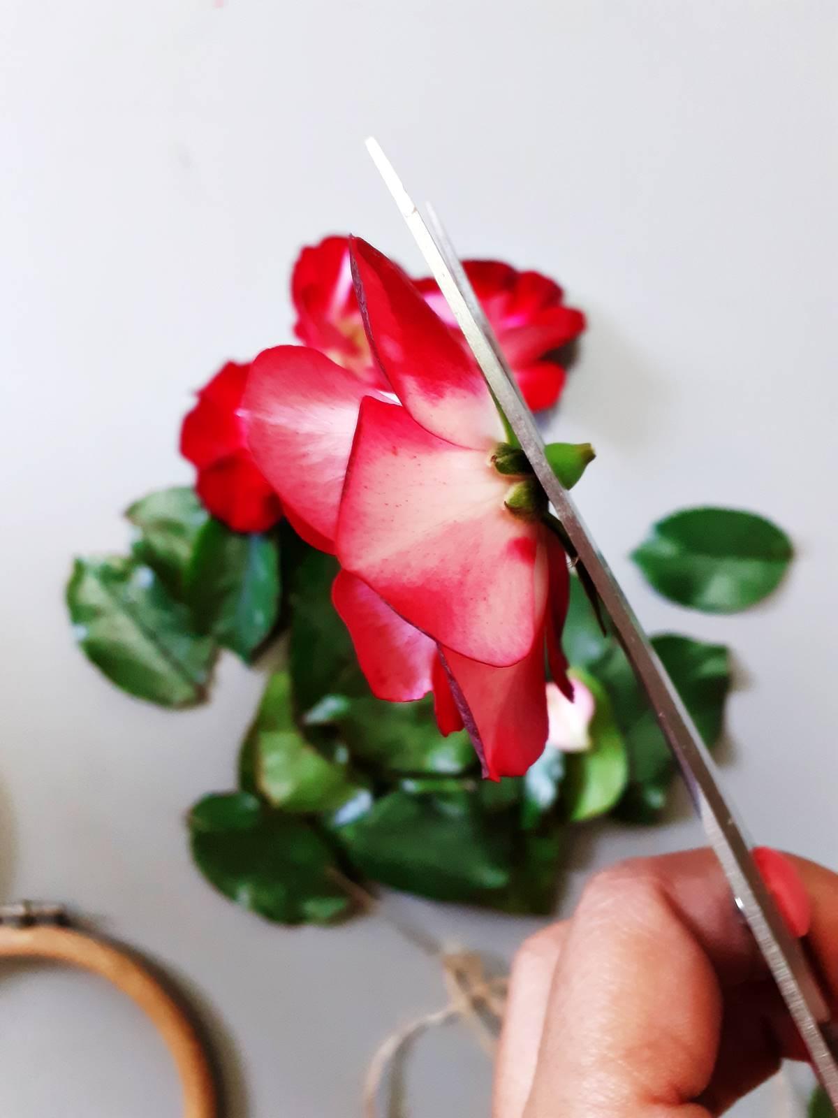 Roses diy mobile cadre photo blog20200526 125426