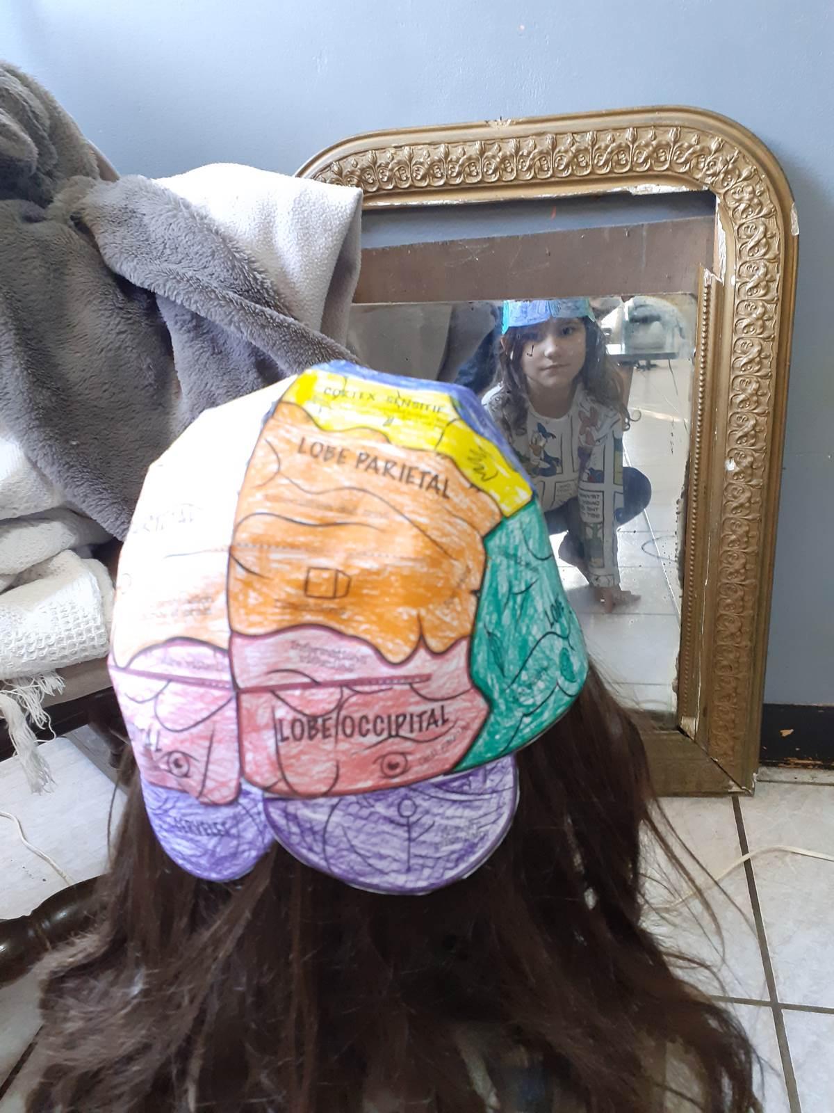 Un cerveau en papier ief20200512 195429