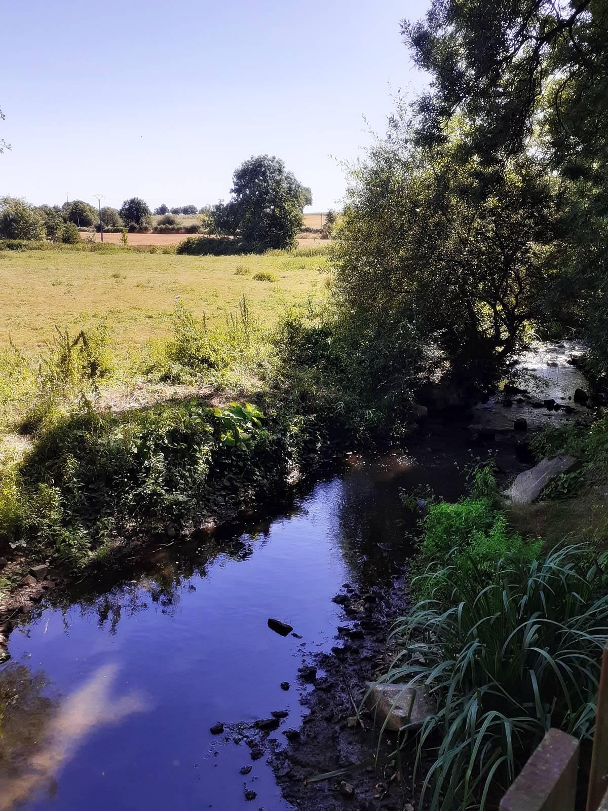 Visite moulin pont godelain20200806 161244
