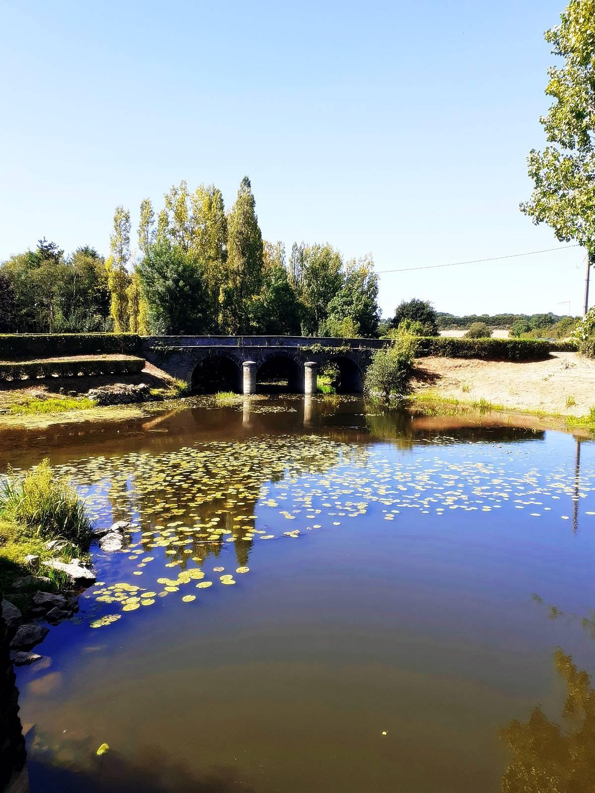 Visite moulin pont godelain20200806 193338